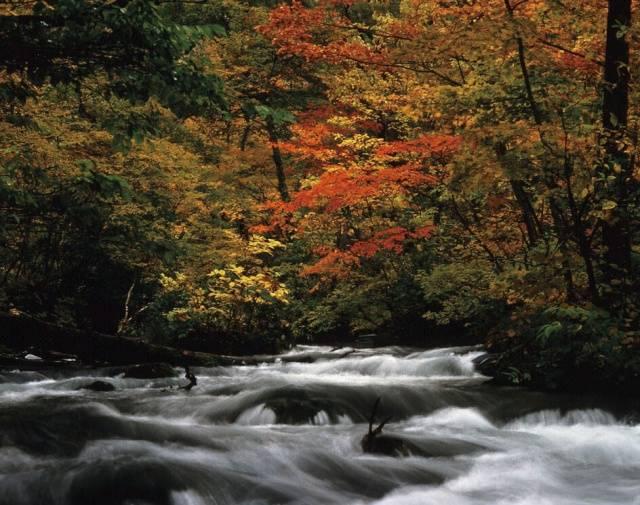 青森県観光情報サイト アプティネット