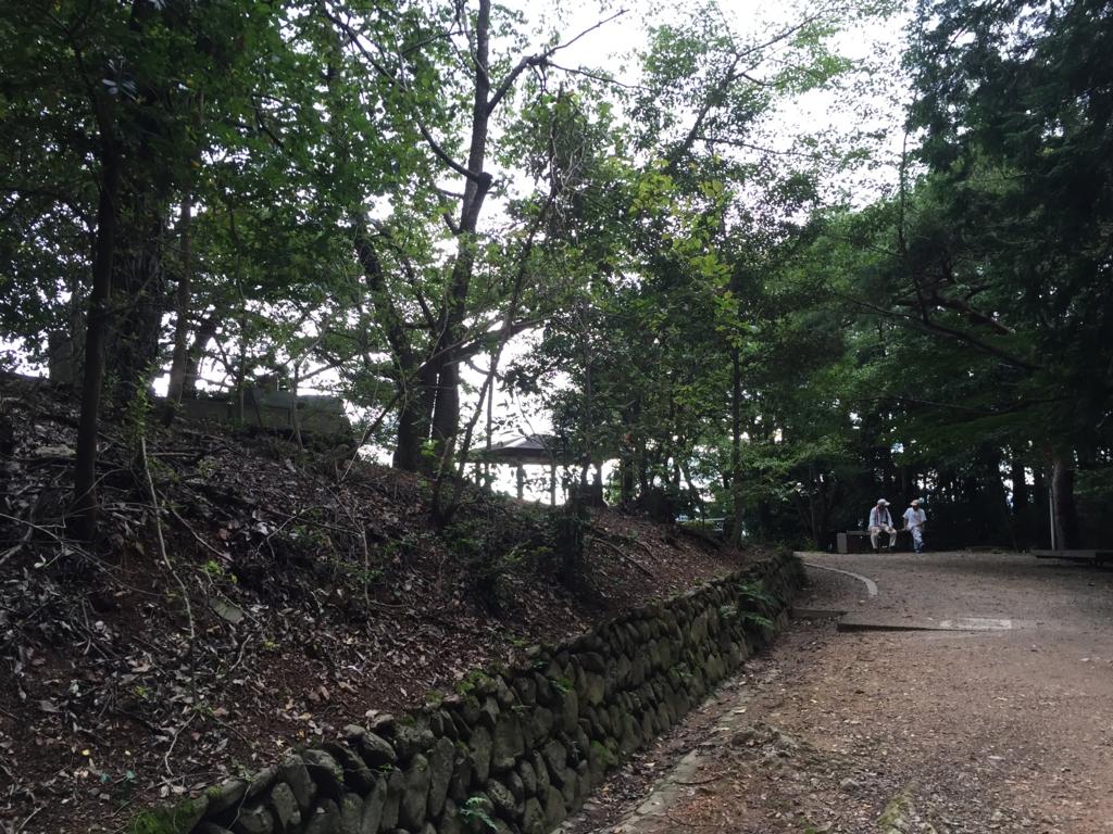 f:id:rino_saki:20170526060614j:plain