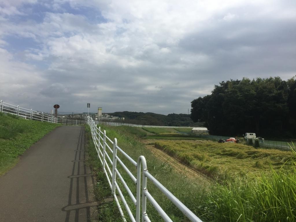 f:id:rino_saki:20171007014648j:plain