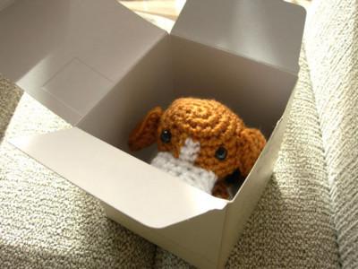 箱の中から