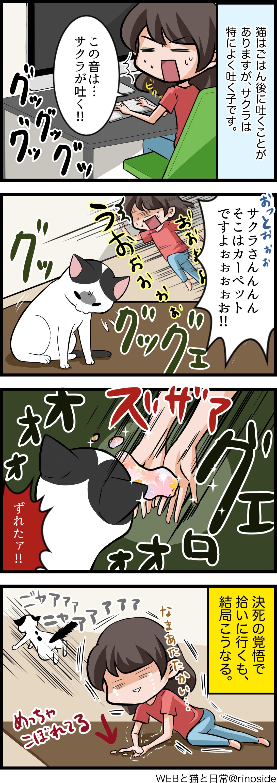 猫のゲロを素手キャッチする特技