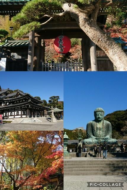 f:id:rinrin-kimamani:20171207152736j:image