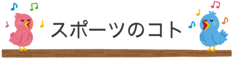 f:id:rinrin-otoiawase:20190114154333j:plain
