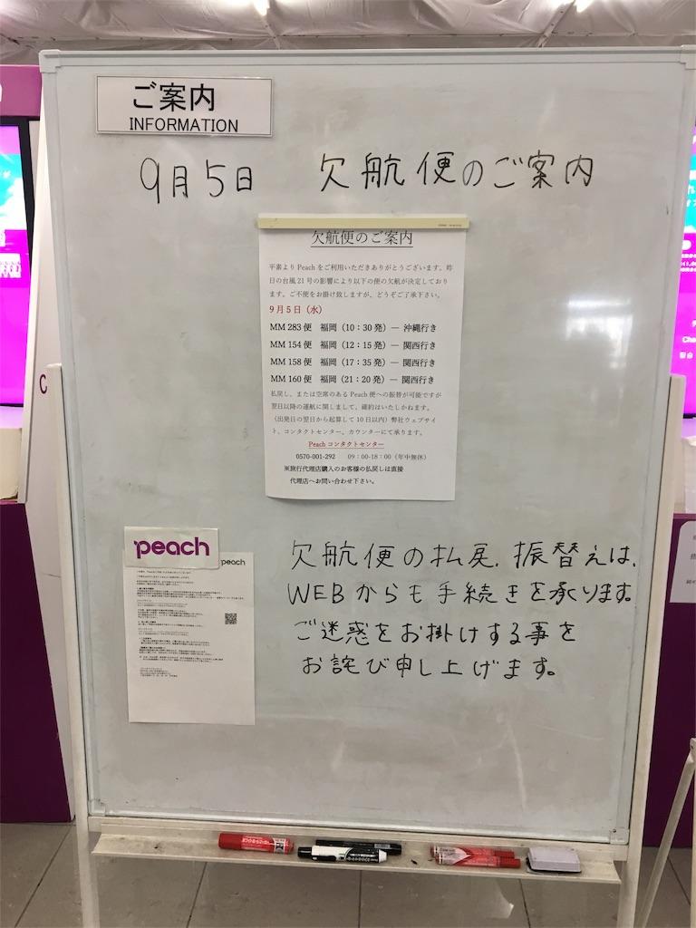 f:id:rio0913koizumi-idaa:20180920115951j:image