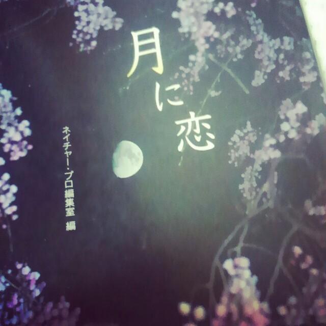 f:id:rionoyashio:20180824204407j:plain