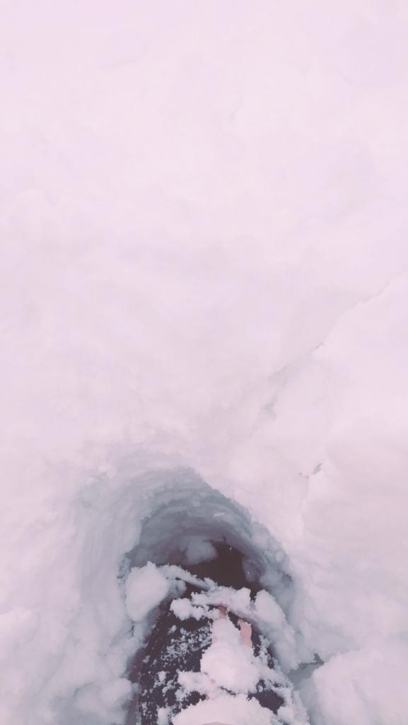 f:id:rioponi:20180211002340j:plain