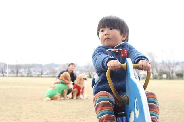 f:id:riotaku_mama:20200214133238j:image