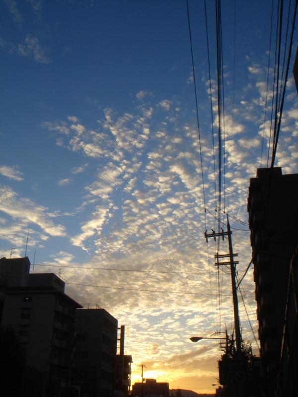 f:id:ripjyr:20081012171338j:image