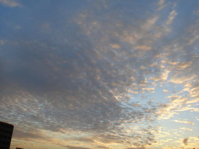 f:id:ripjyr:20081012172112j:image
