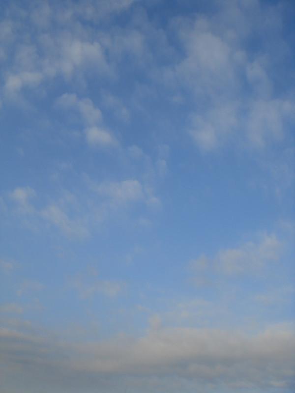 f:id:ripjyr:20081013071016j:image
