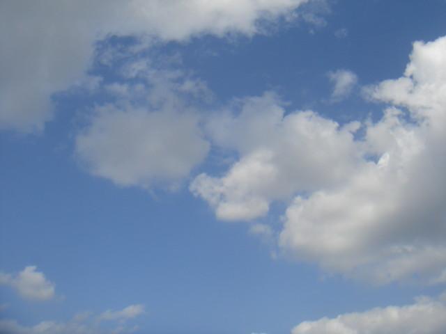 f:id:ripjyr:20091018114020j:image