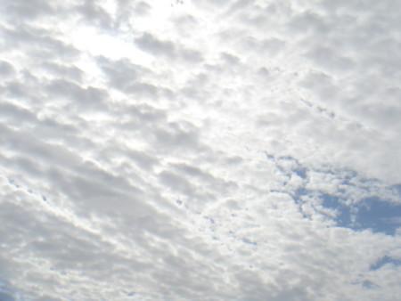 f:id:ripjyr:20100227120524j:image