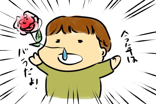 花粉とバラの花