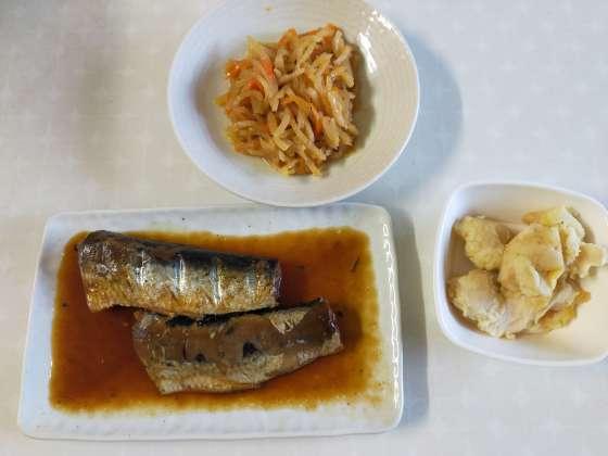 わんまいるお試しセット和食メニュー(メイン魚)の写真