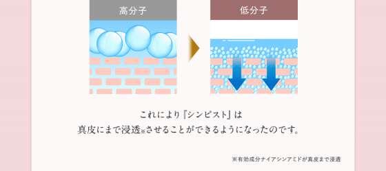 シンピストの製法を表した図