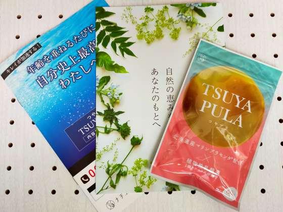 つやプラの実物と同封されていたパンフレットの写真