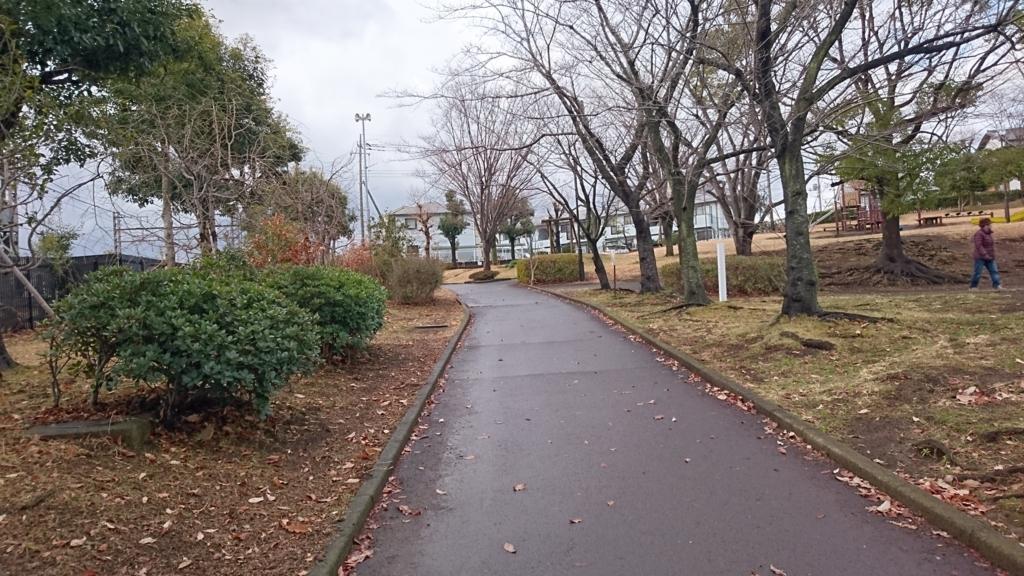 f:id:riri_kawase:20180114003611j:plain
