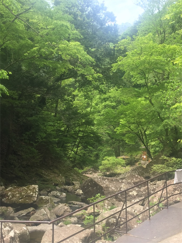 f:id:ririririkokoko:20170512161048j:image