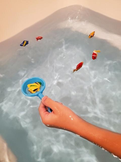 泳ぐ熱帯魚