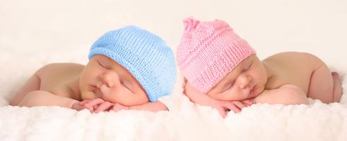 胎児の性別の見分け方