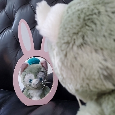 ウサギのミラー