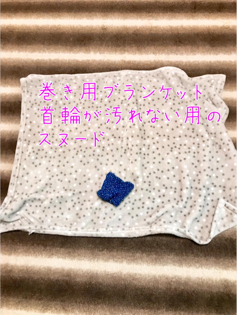 f:id:riro-chihuahua:20190412174920p:image