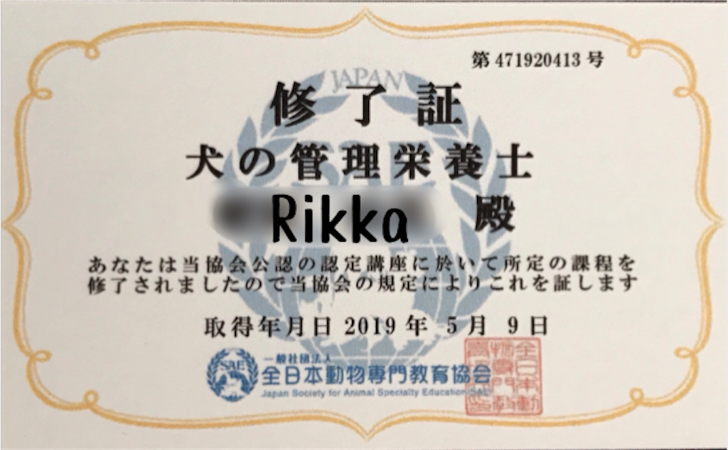 f:id:riro-chihuahua:20190522014952p:image