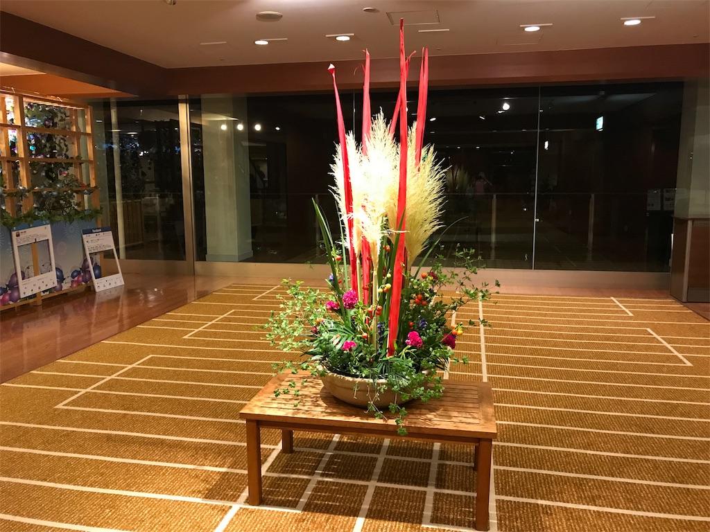 f:id:risa-ken:20170811194216j:image