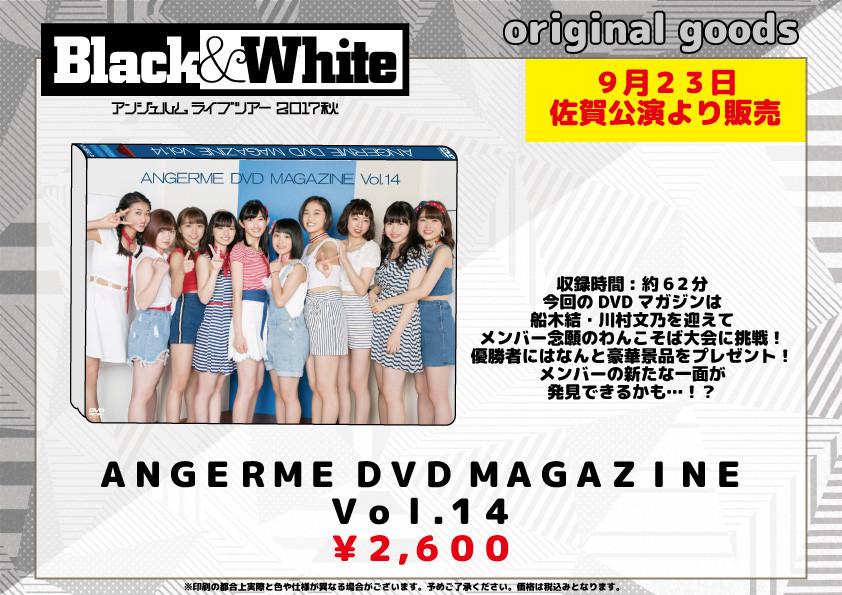 アンジュルム ライブツアー 2017秋「Black & White」Dマガ 14