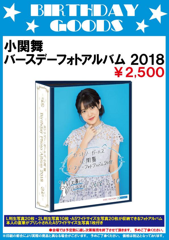 小関舞BDフォトアルバム2018