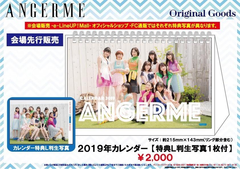 アンジュルム ライブツアー 2018秋 電光石火 グッズ