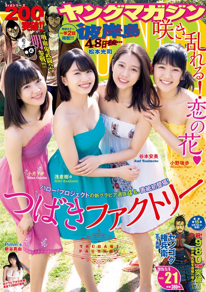 ヤングマガジン 2019年 5/6 号 [雑誌]