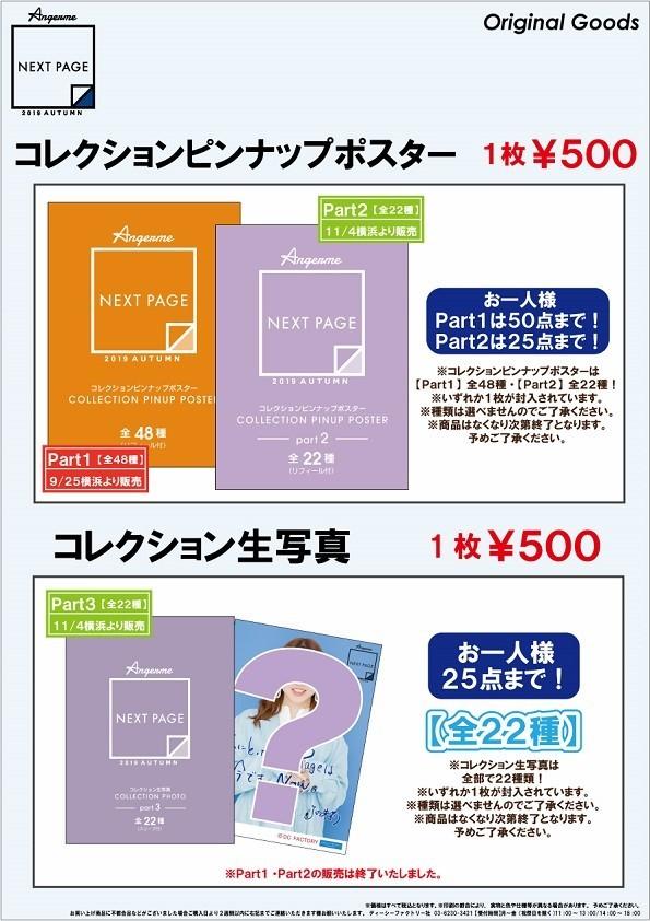 アンジュルム ライブツアー 2019夏秋「Next Page」グッズ