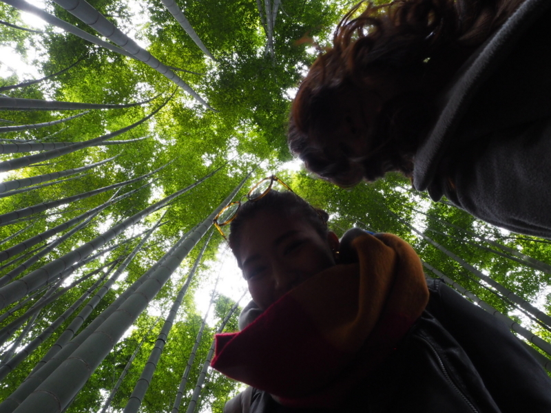 鎌倉竹林。右が私