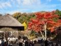 鎌倉円覚寺の紅葉