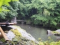 蓮花寺の中庭