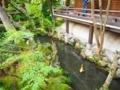 永観堂中庭