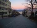 函館八幡坂 夕暮れ