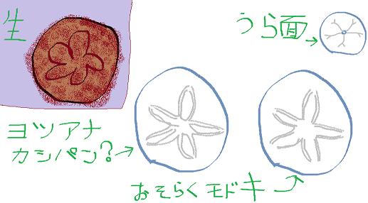 f:id:risazonamoshi:20170402161254p:plain