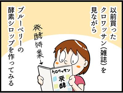 f:id:rise_more:20160815223623j:plain
