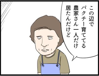 f:id:rise_more:20160911183934j:plain