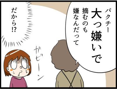 f:id:rise_more:20160911183935j:plain