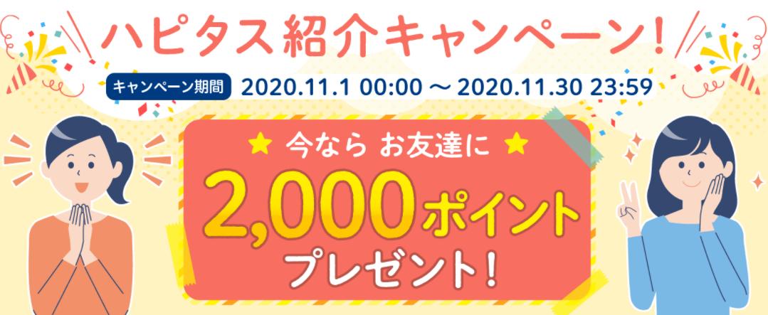 f:id:rismoco:20201103211350p:plain