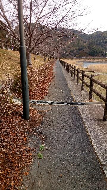 f:id:rissho-blog:20170323212650j:image