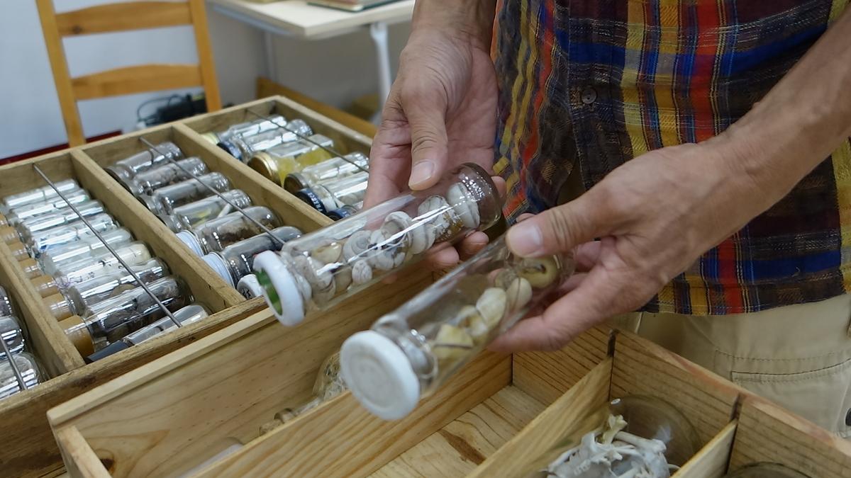 小瓶を持つ吉川陽一郎さんの手