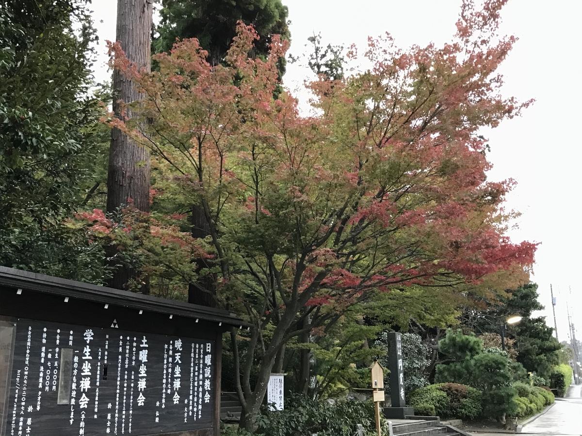 2019年鎌倉円覚寺紅葉20191114-3