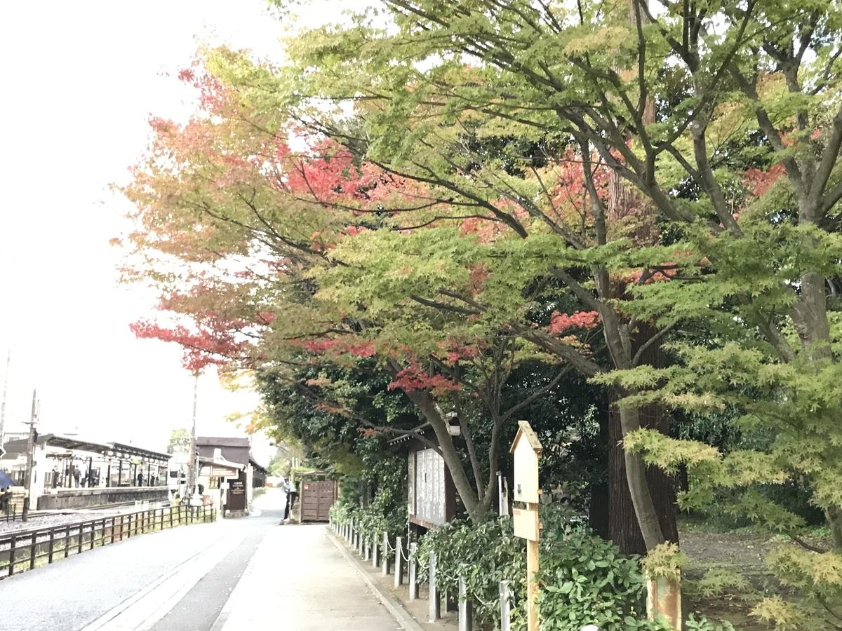 2019年鎌倉円覚寺紅葉20191114-4