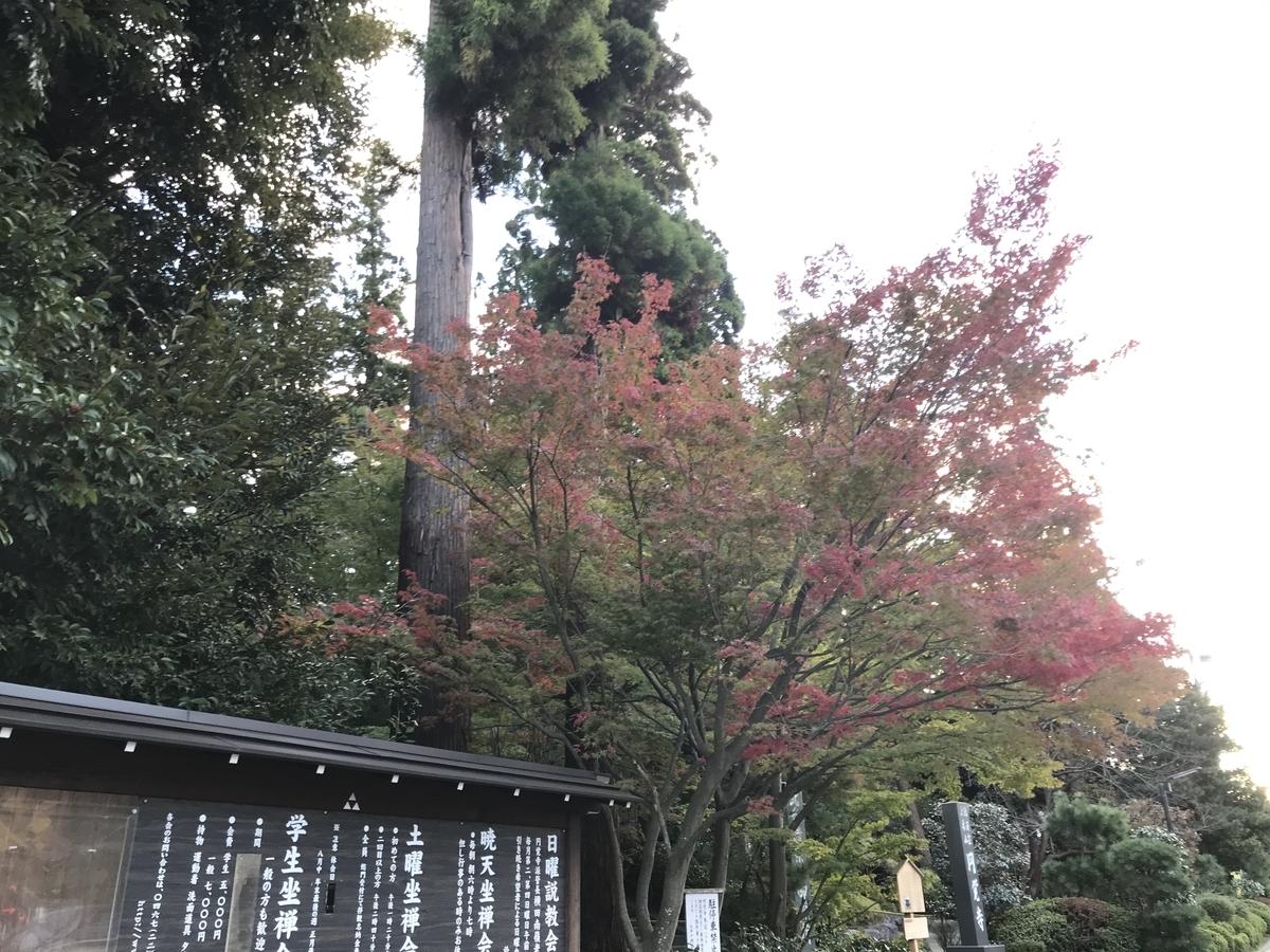 2019年鎌倉円覚寺の紅葉20191115-2