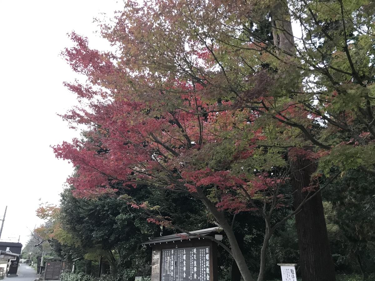 2019年鎌倉円覚寺の紅葉20191118-2