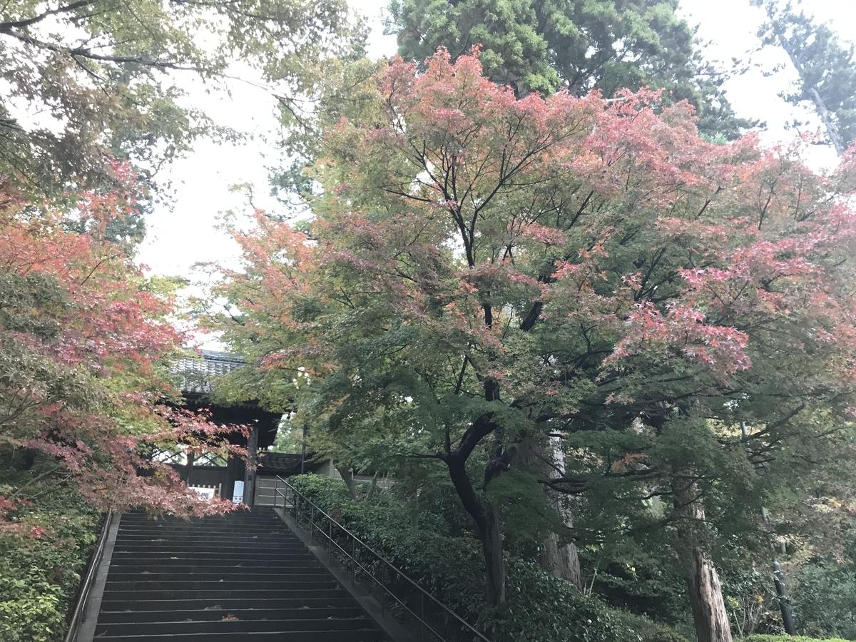 2019年鎌倉円覚寺の紅葉20191119-3